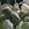 Boulders for landscape design